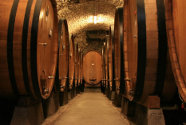 Chianti Region and Its Cellars Private Tour